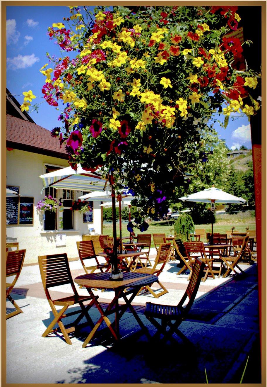 OK Patio Café Lake Country Museum & Archives