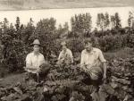 Stokes: men in garden.jpg