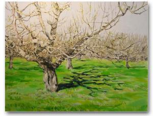 ART TOUR_John Waite.Orchardii