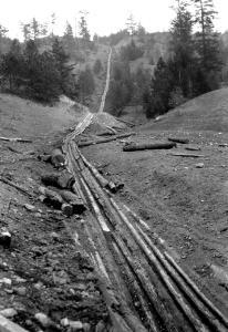 Pandosa Logging Chute