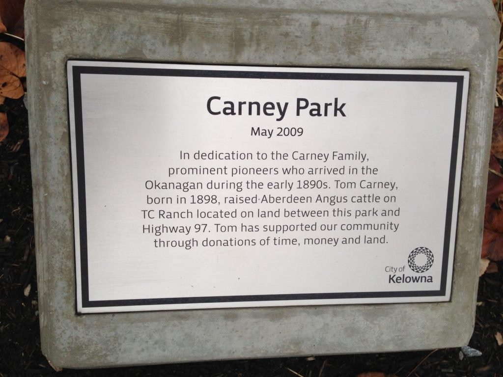 Carney Park, 2009
